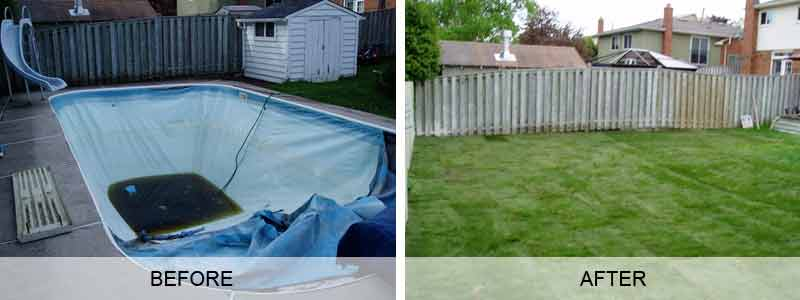 Never Let This Happened To Your Precious Backyard